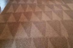 carpet cleaning4