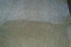commercial carpet cleaning2