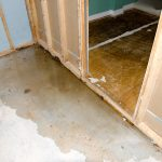 water damage cleanup madison, water damage madison