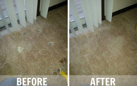 carpet repair2