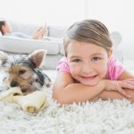 carpet cleaning sun prairie