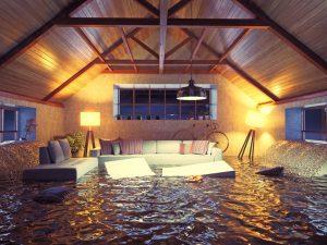 water damage restoration madison