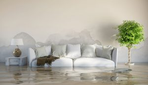 water damage restoration fitchburg, water damage repair fitchburg, water damage cleanup fitchburg